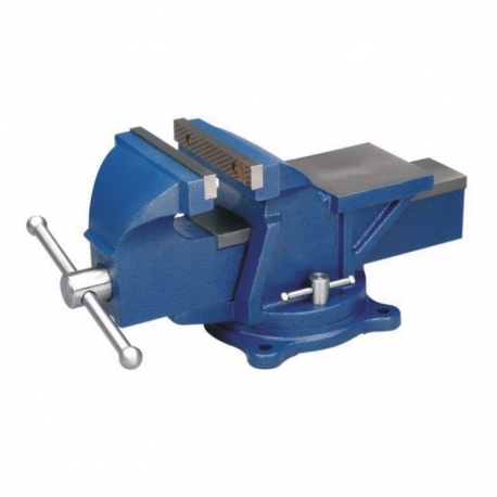 Vice Bench Vice 5 Inch